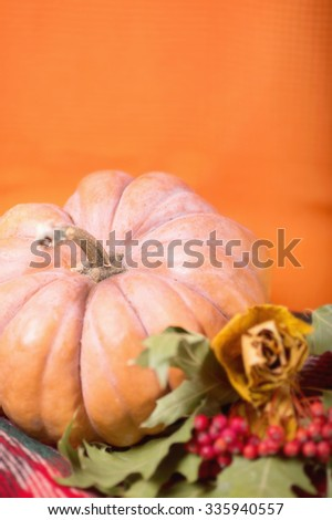 Autumn still life with pumpkin, plaid, berries and leaves on orange background. Selective focus. Space for text. - stock photo