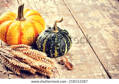 Autumn still-life with pumpkins and wheat in rustic setting - stock photo