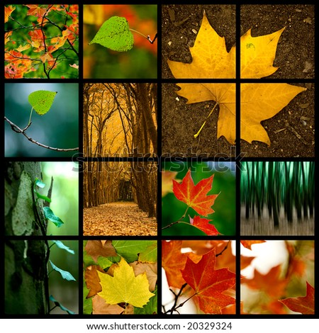 Autumn themed collage - Beautiful colored fall pictures - stock photo