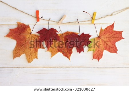 Autumn time decoration, dry maple leaves pinned on rope with clothes pin, wooden backdrop - stock photo