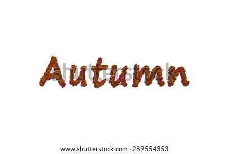 Autumn tree text with white background concept of typography - stock photo