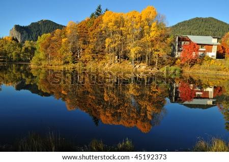 Autumn trees at Lake - stock photo