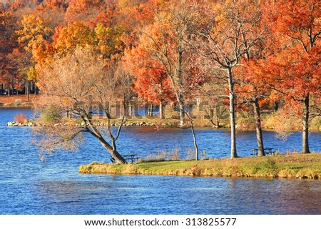 Autumn trees at the shore of  blue water lake - stock photo