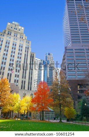 Autumn trees  in the city, with blue sky - stock photo