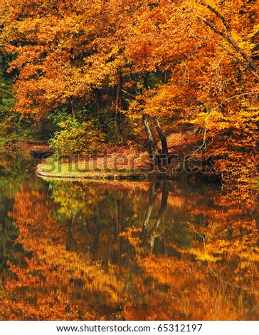 Autumn trees with reflection on water - stock photo