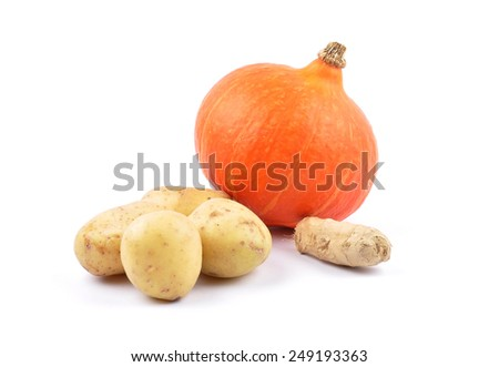 Autumn vegetable - stock photo