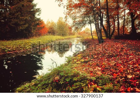 Autumn vintage landscape - forest river with yellowed trees and red leaves carpet on the foreground   - stock photo