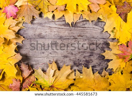 Autumn wooden natural background with maple yellow leaves with space for text - stock photo