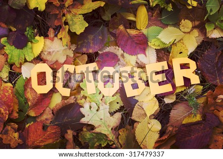 Autumn, yellow leaves, the word October - stock photo