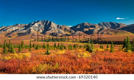 Autumnal Denali Nt Park Scenery with mountain range - stock photo