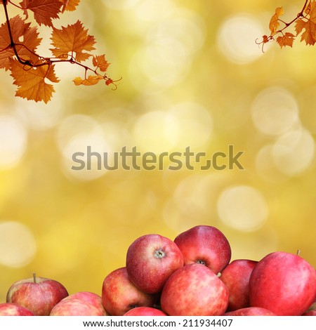 autumnal frame with apples and leaves - stock photo