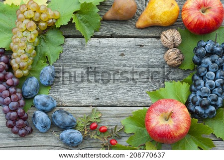 autumnal fruits frame, wooden background  - stock photo