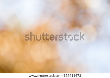 autumnal natural bokeh for background or backdrop - stock photo