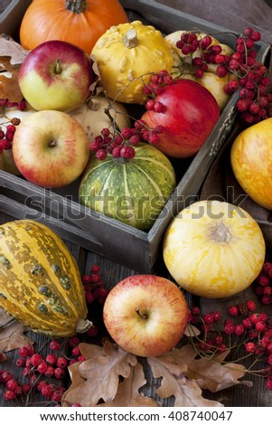 Autumnal pumpkins and apples, harvest - stock photo