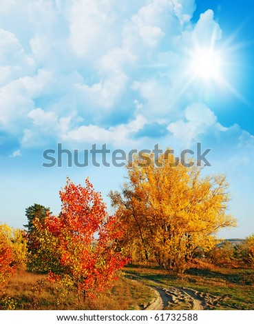 autumnal yellow and red trees  on sunny blue sky - stock photo