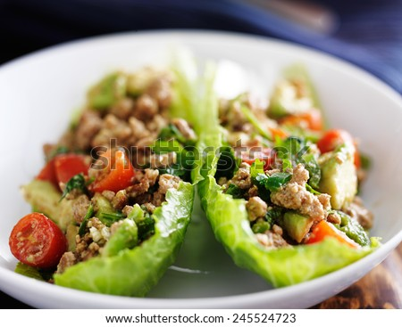 avocado turkey lettuce wraps - stock photo