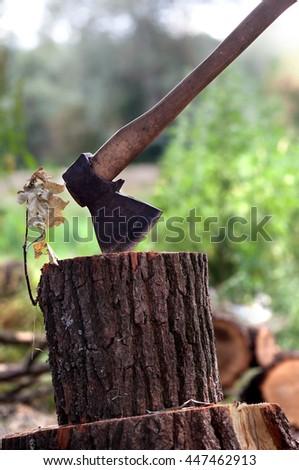 Axe in oak stump in forest - stock photo
