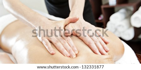 ayurverdic massage therapy - stock photo