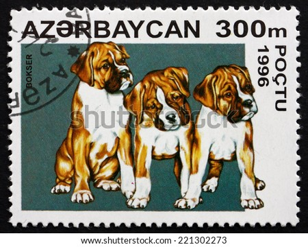 AZERBAIJAN - CIRCA 1996: a stamp printed in the Azerbaijan shows Boxer, Breed of the Dog, circa 1996 - stock photo