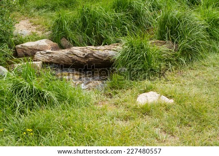 Babbling brook in green grass - stock photo