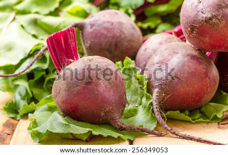 baby beetroots  - stock photo