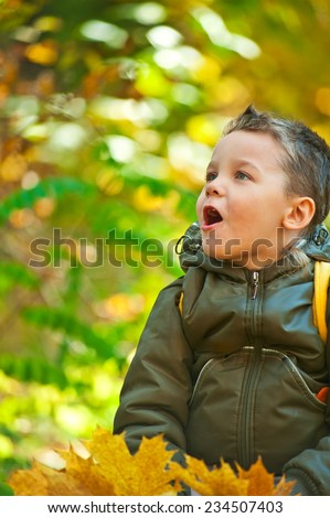 baby boy at the colorful autumn park - stock photo