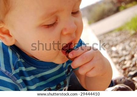 Baby Boy Biting a Rock - stock photo