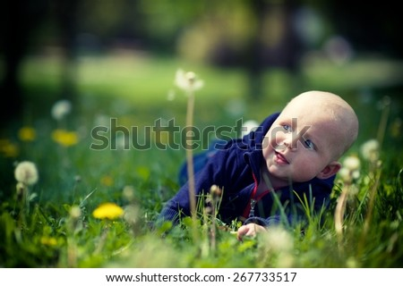 Baby crawling on the grass - stock photo