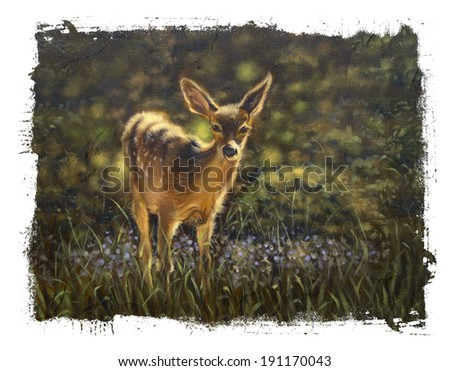 Baby deer Fawn  torn edges - stock photo