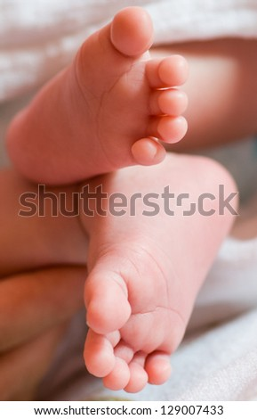 Baby feet - stock photo