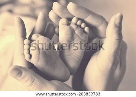 Baby feet cupped into mothers hands. Newborn in mother's hands.  - stock photo