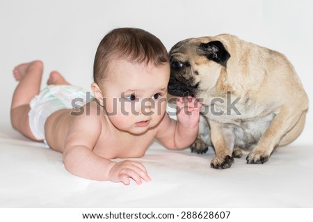 baby. friendship with a dog Isolated white background - stock photo