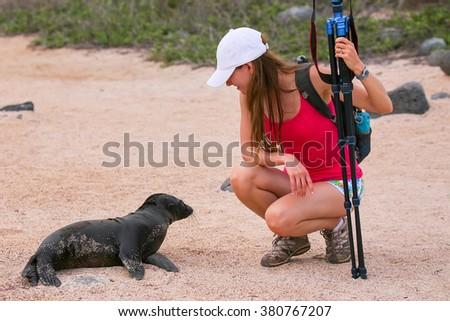 Baby Galapagos sea lion (Zalophus wollebaeki) looking at young woman on North Seymour Island, Galapagos National Park, Ecuador - stock photo