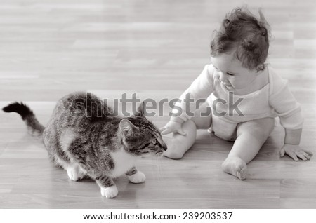 Baby (girl age 06 months) sits and plays with a pet animal (domestic cat) at home. Concept photo animals and children. (BW) - stock photo