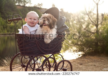 Baby girl and puppy are sitting in a vintage pram - stock photo