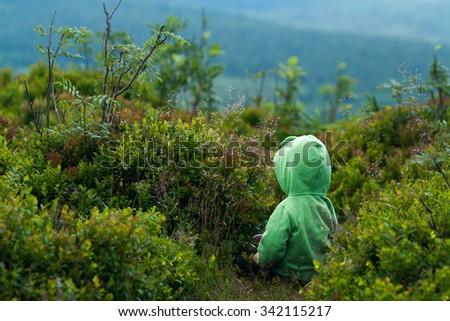 baby girl or boy sitting on the top of mountain and eating blackberry. Dressed in green jacket with hoody. View from the back. Jizera mountains, Izera mountains. Czech republic. - stock photo