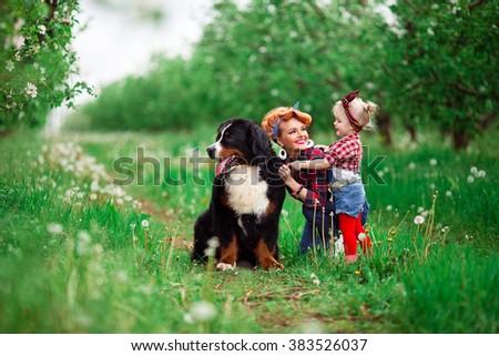 baby girl woman with dog bern in spring garden, dandelions - stock photo