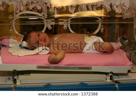 baby in an incubator at hospital ICU - stock photo