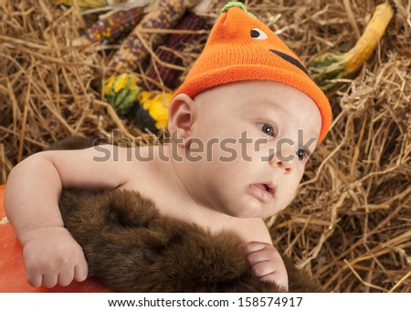 Baby in the pumpkin during Halloween photo shoot - stock photo