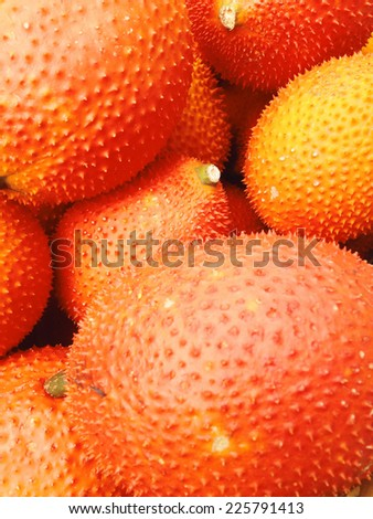 Baby Jackfruit in the market - stock photo