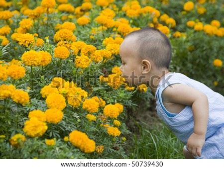 baby smelling flowers in summer day - stock photo