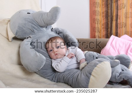 baby with elephant	 one month baby girl with plush toys. - stock photo