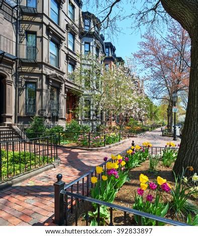 Back Bay brownstones, red brick sidewalk, spring flowers - stock photo