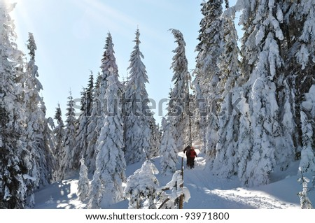 Back country skier (ski touring), walking up to a snowed mountain - stock photo