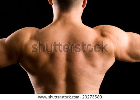 Back of a muscular man - stock photo
