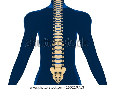 Back Pain, Spine, Backache - stock photo