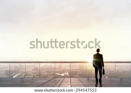 Back view of businessman standing on roof looking at city - stock photo