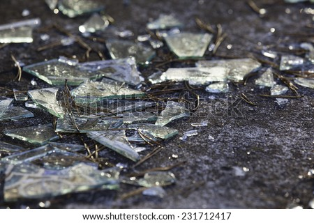 Background as broken pieces or crocks of white glass on the ground outdoors. Pine needles between glass pieces. - stock photo