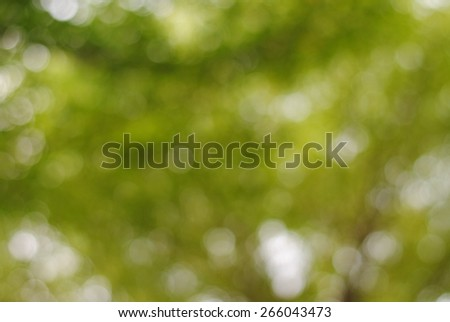 background blurred nature green garden blur nature abstract park forest bright focus day texture - stock photo