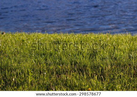Background bright green grass and water - stock photo